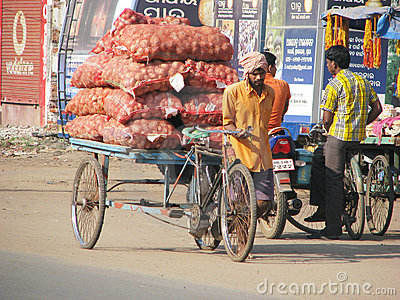 Vegetables transportation in Puri Editorial Stock Image