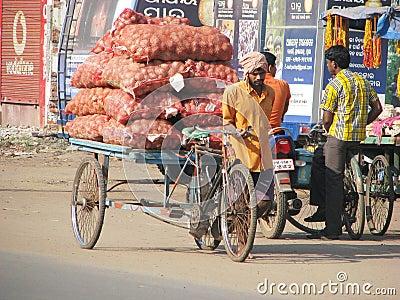 Vegetables transportation in Puri Editorial Stock Image