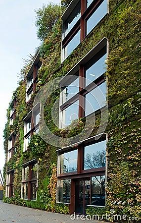 Vegetal wall in Paris