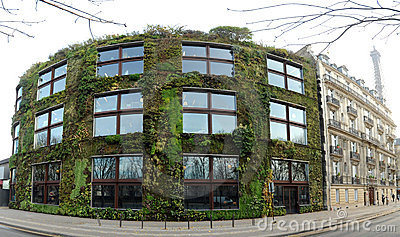Vegetal wall in Paris
