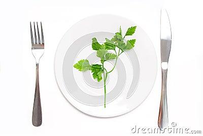 Vegetarian food concept
