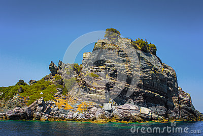 Vegetated sea cliff
