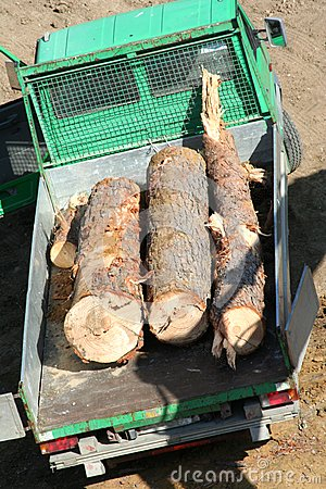 Vehicle with logs of wood