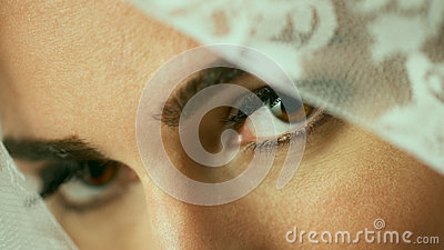 Veil eyes
