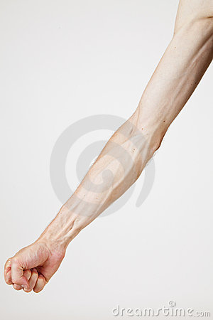 Veins of a man