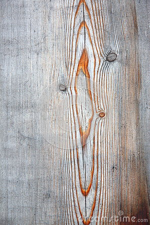 Veins on weathered wood