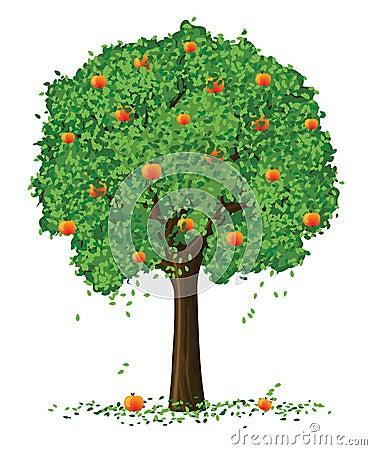 Vektorschattenbild-apfelbaum