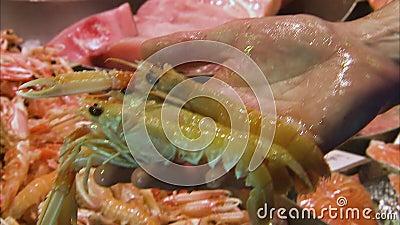 Vendendo lagostas no mercado filme