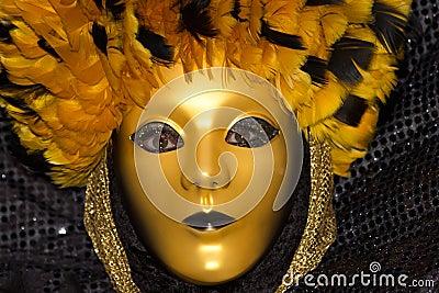 Venice Carnival 2013 Editorial Photography