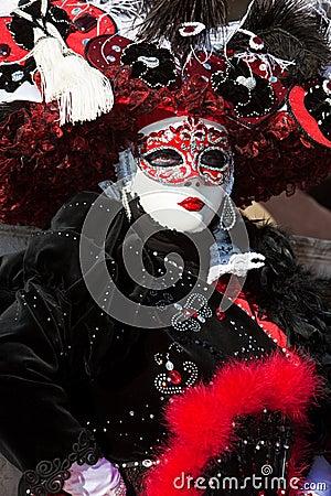 Free Venice Carnival Costume Stock Photos - 8273293