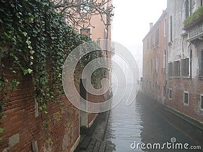 Venice Mist
