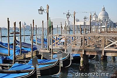 Venice, Salute