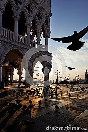 Free Venice Sunrise Royalty Free Stock Image - 23349916