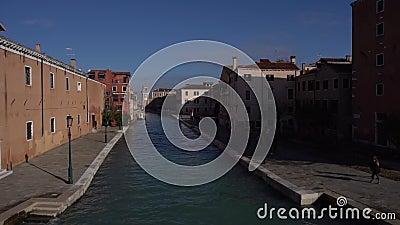 Venice view from the bridge, bird flies stock footage