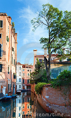 Venice view with tree