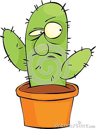Verärgerter Kaktus