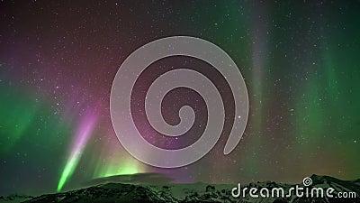 Verbazende 4k mening over purpere groene heldere kleurrijke noordelijke lichte aurora borealis australis gloed in in time tijdspa stock videobeelden