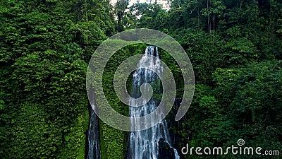 Verbazende Tropische Waterval in Groen Regenwoud stock footage