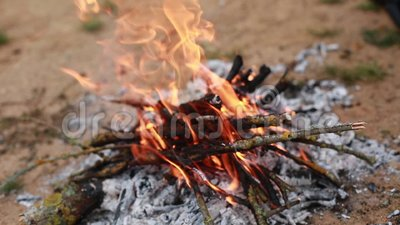 Verbrandend rooster van droge takken op een zandwosteland stock footage