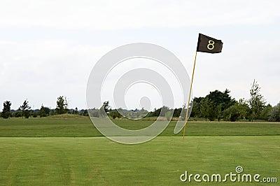 Verde 03 do golfe