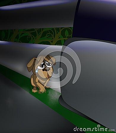Verlassener Hund