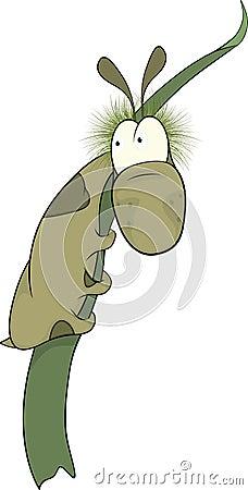 Fotografia di vermi in uno stomaco della persona