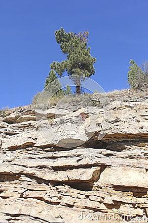 The Vermilion Bluffs