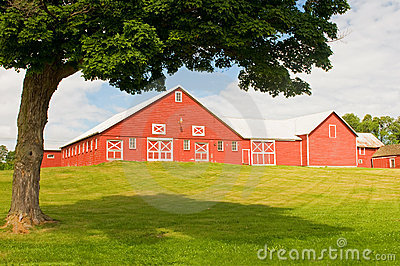 Vermont barn and farmyard