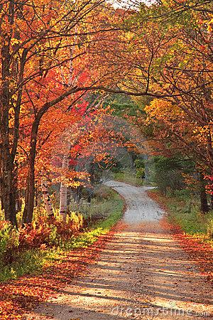 Vermont countryside road during autumn