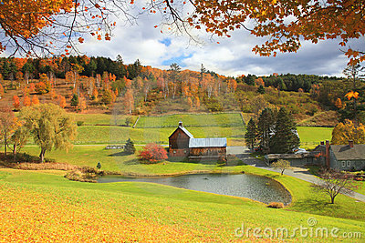 Vermont Farm In Autumn