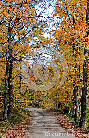 Vermont path in Autumn