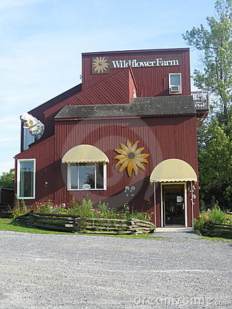Vermont Wildflower Farm Editorial Stock Image