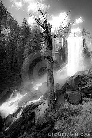 Free Vernal Waterfall Royalty Free Stock Photography - 5173547