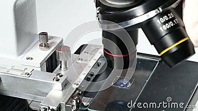 Verschiebungslinsen des Forschers oder des Wissenschaftlers auf Mikroskop mit Exemplar auf Beispielhalter stock video