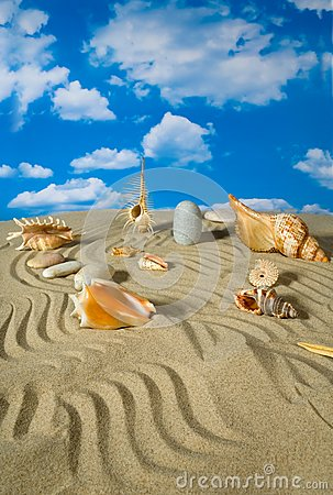 Landschaft mit Muschel und Steinen auf Himmel