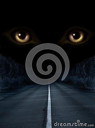 Verschrikking in nacht