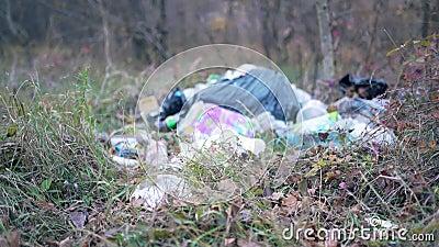 Vertedero en el bosque de otoño Desastre ecológico, irresponsabilidad y negligencia del hombre Bolsas y plástico cerrados almacen de video
