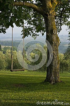 Free Vertical: Backyard Tree Swing In Tuscany, Italy. Stock Photos - 20136263