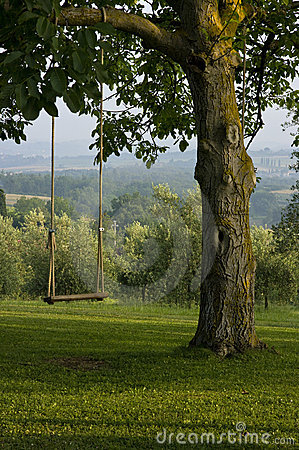 Vertical Backyard Tree Swing In Tuscany Italy Stock
