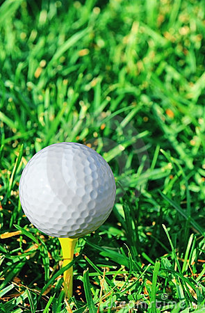 Vertical of golf ball and grass
