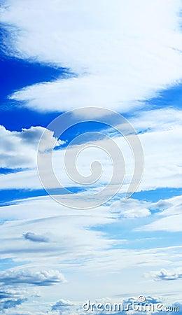 Vertical panaramic cloudscape