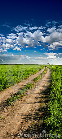 Vertical panorama of country road