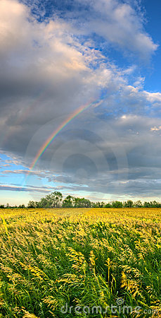Free Vertical Panorama With Rainbow Royalty Free Stock Photos - 10360378