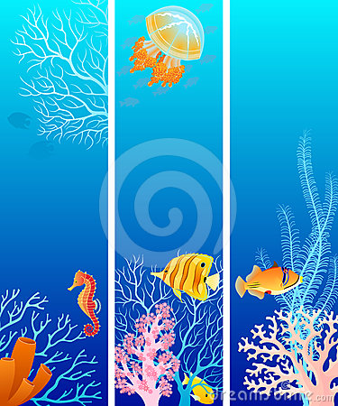 Free Vertical Sea Life Banners Stock Photography - 24403272
