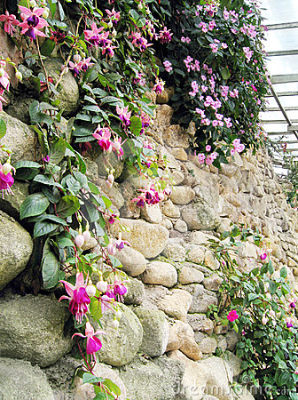 Vertical style landscaping on wall