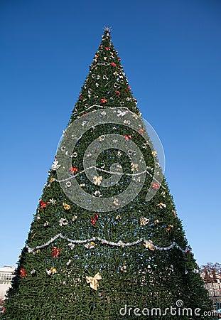 A very big Christmas tree and sky