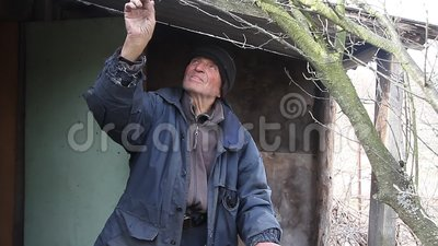 A very old man inspects garden trees in the spring before flowering removes  extra branches preparing for the new season  Charity, lost