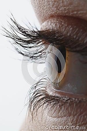 Very sharp and detail macro of eye