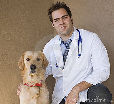 Free Vet And Retriever 3 Stock Photography - 2246552