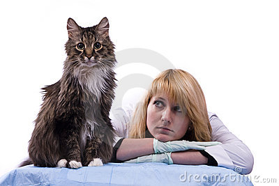 Vet feels sadness and look homeless cat